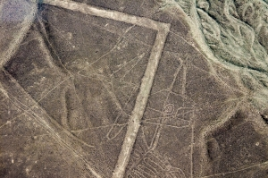 Nasca Lines - Whale