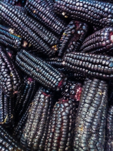 Purple Peruvian Corn